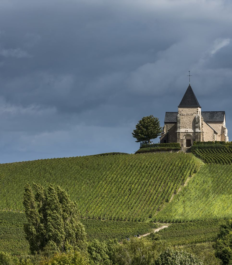Discover this lovely 12th century church on day 3 in the middle of a vineyard landscape