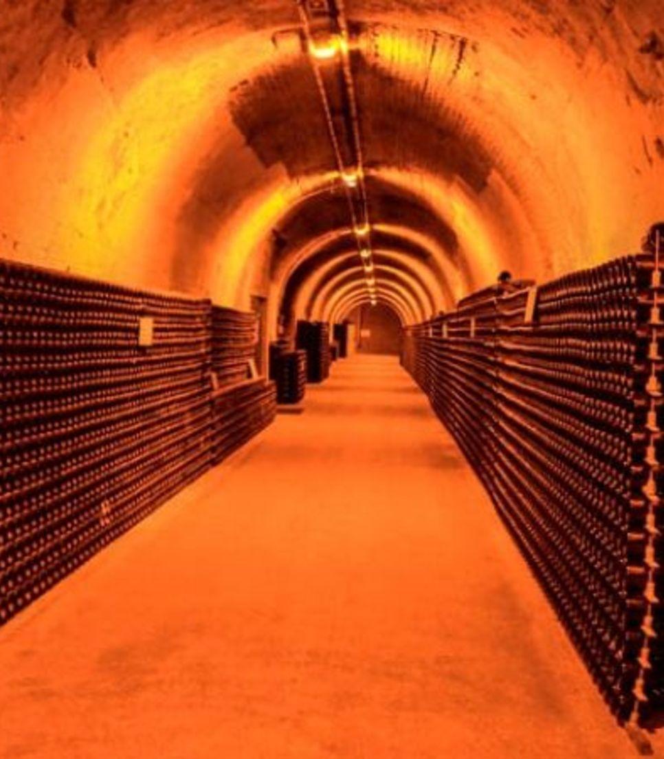 Visit the atmospheric underground corridors housing the region's finest