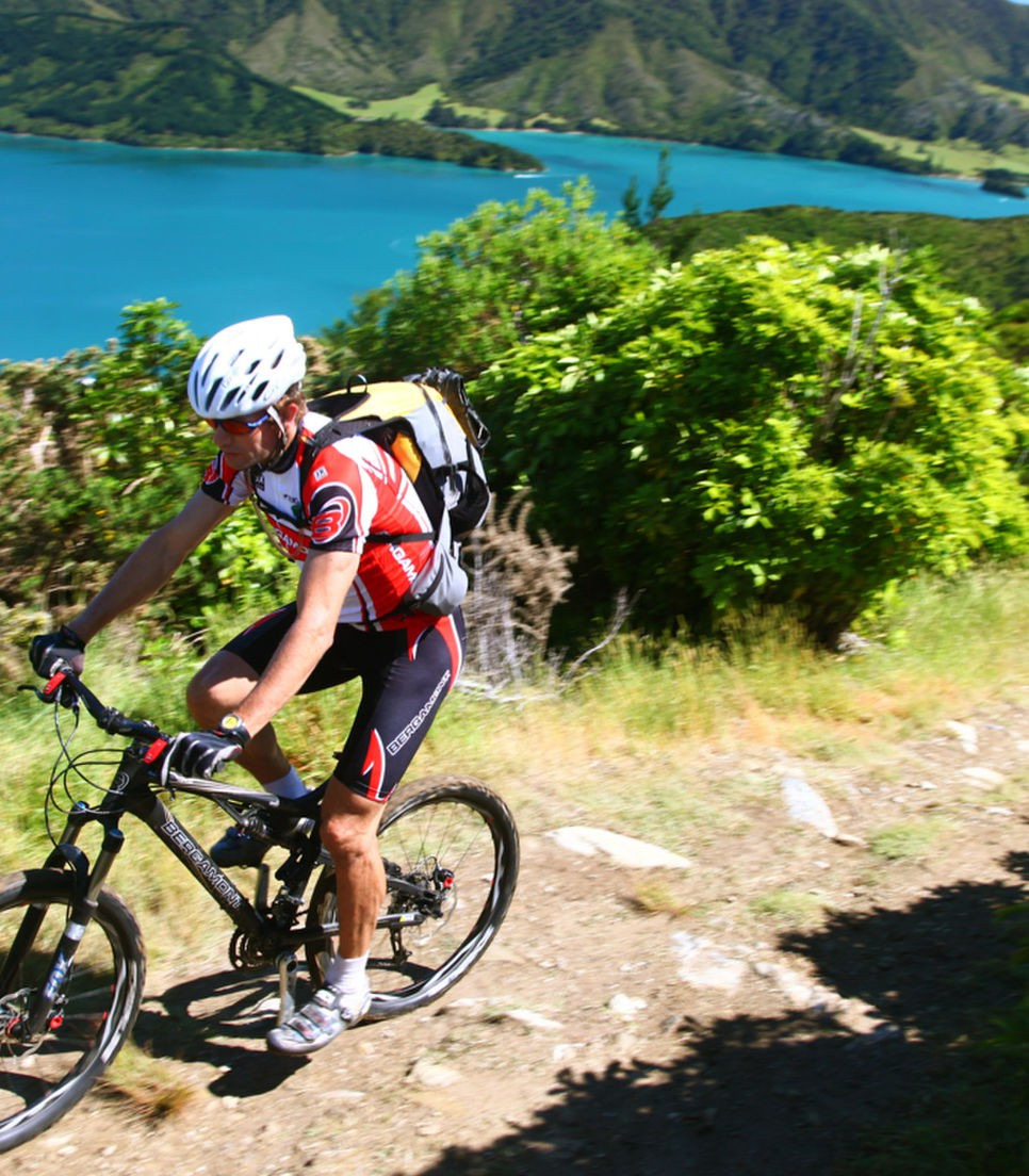 Spend the penultimate day riding this fantastic track in the Marlborough Sounds