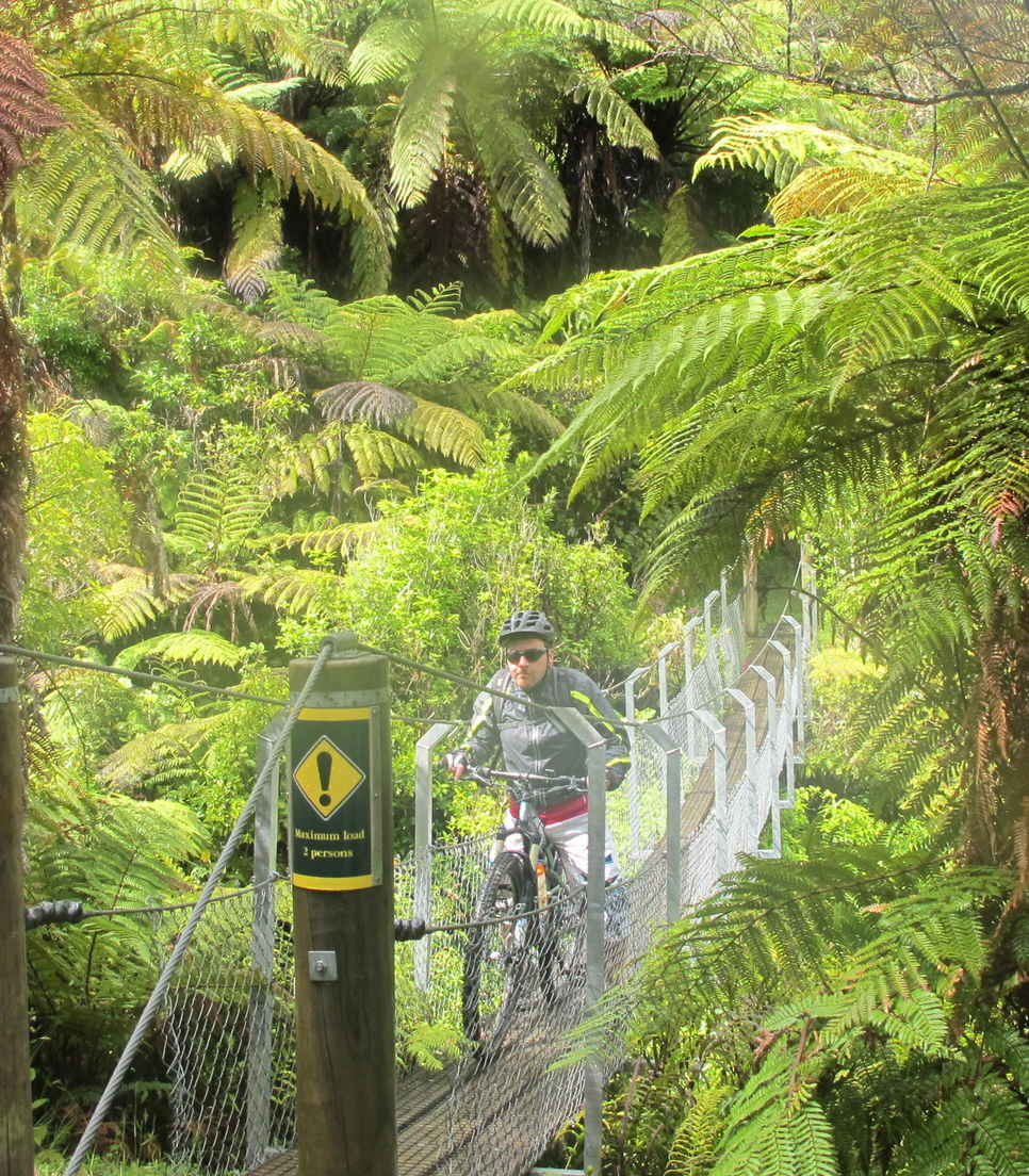Challenge yourself through a variety of terrains and over some narrow bridges