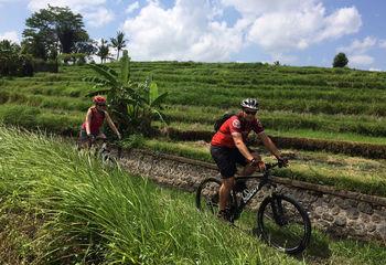 Bali Mountain Biking Adventure