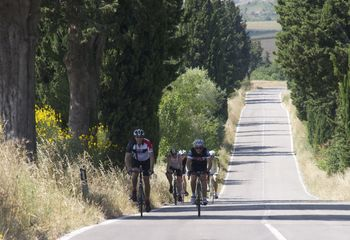 Discover Tuscany Bike Tour