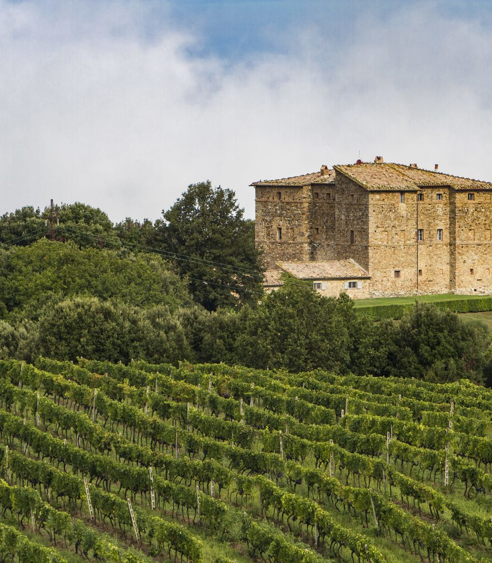 Enjoy the local produce as you discover more about Tuscan wines and of course, sample them