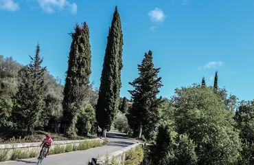 Cyclist riding the Tuscan roads