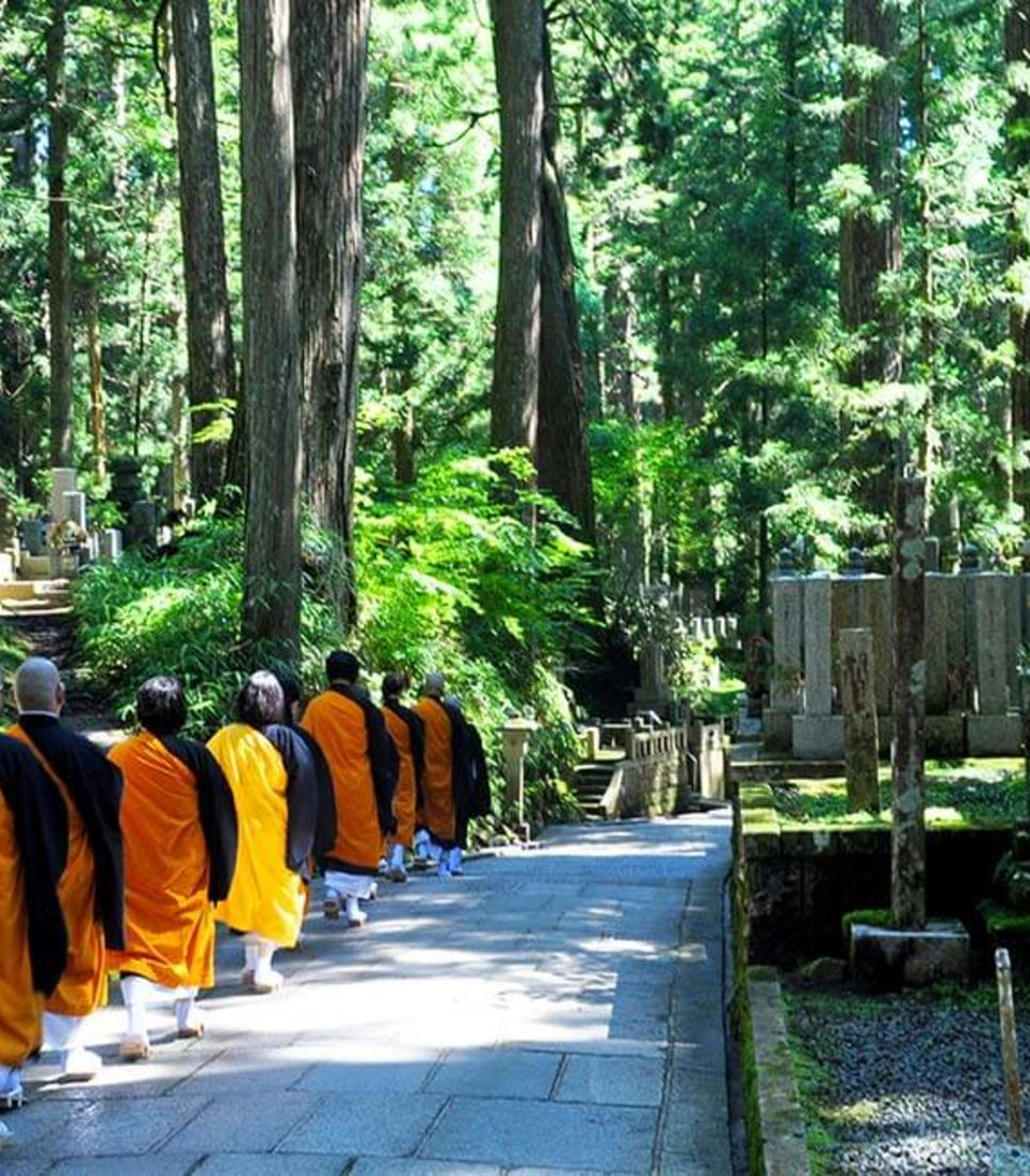 You'll see monks and pilgrims along the way, as you pass a number of the temples from amongst the 88