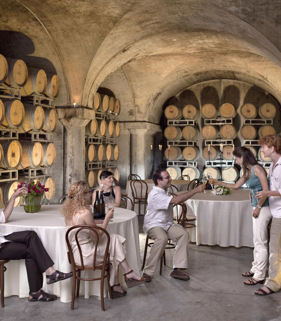 Go on a wine educational course as part of the tour and enjoy sampling the produce