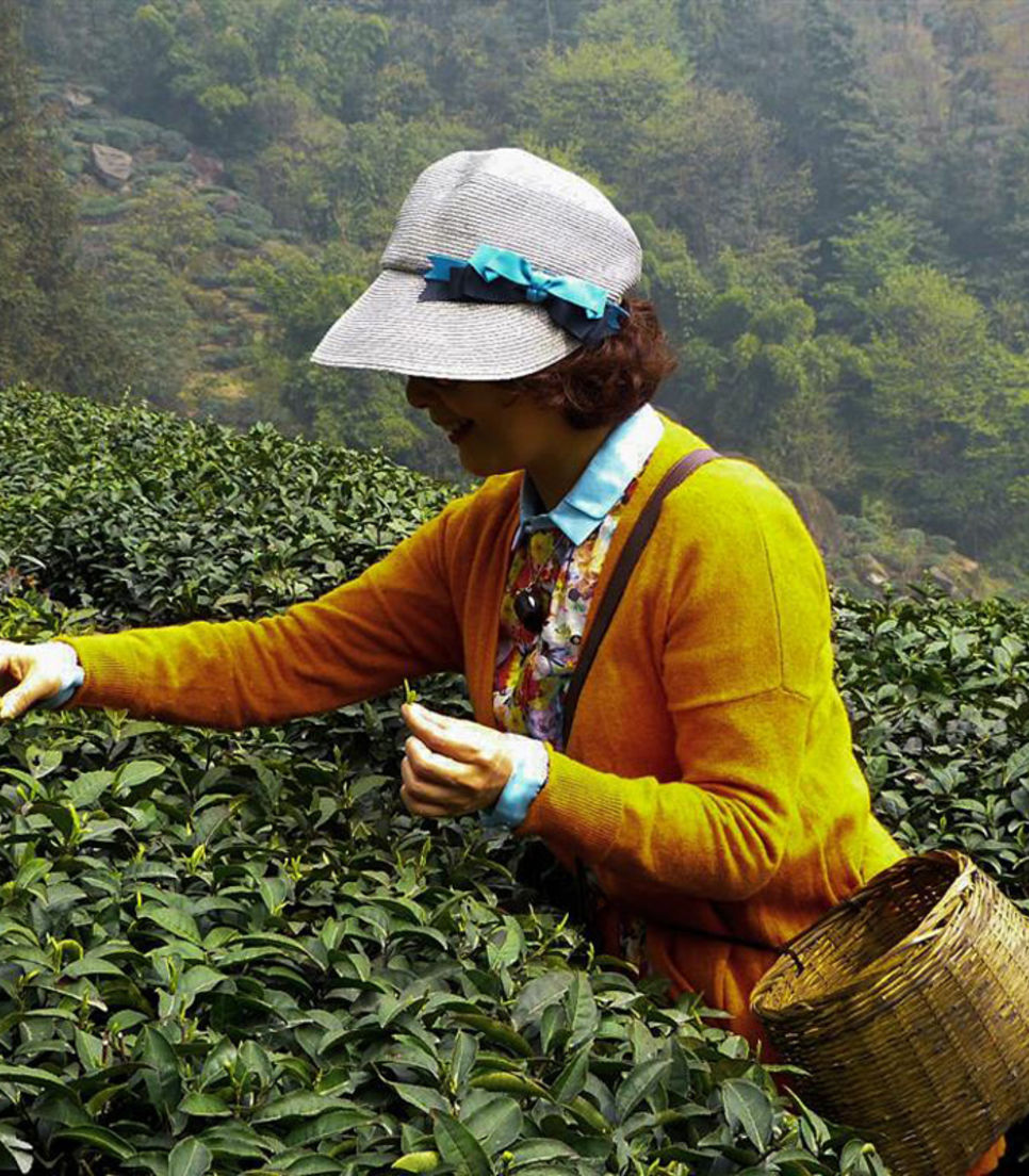 Head over to the birthplace of Chinese tea cultivation