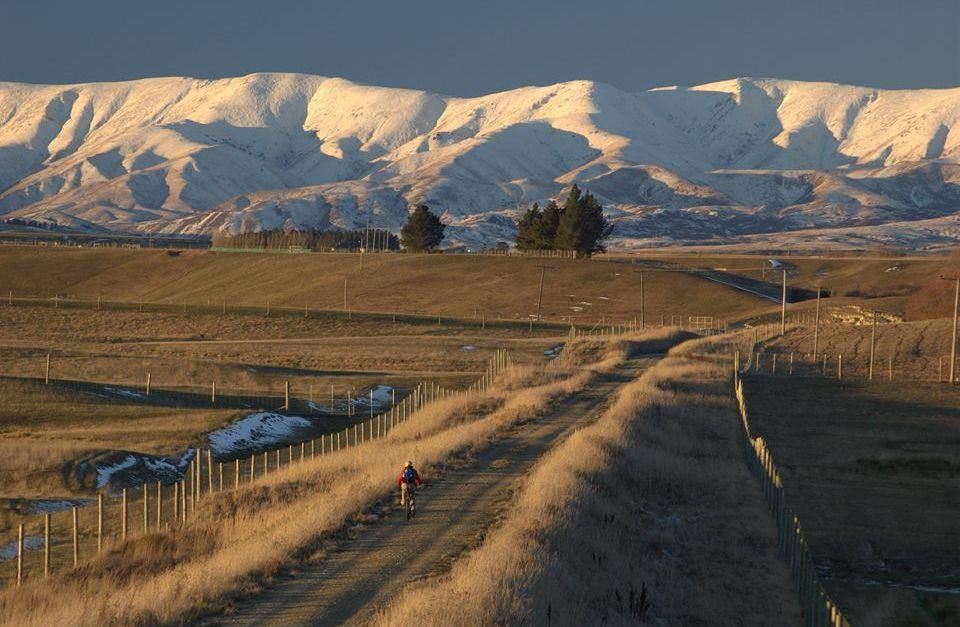 Central Otago Luxury E-Bike and Wine Tour
