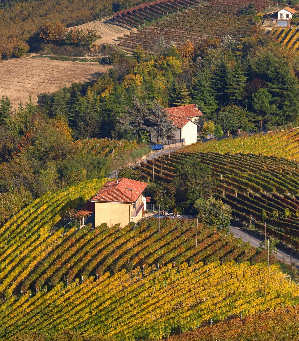 Discover the beautiful vineyards and scenery of this lovely part of Italy