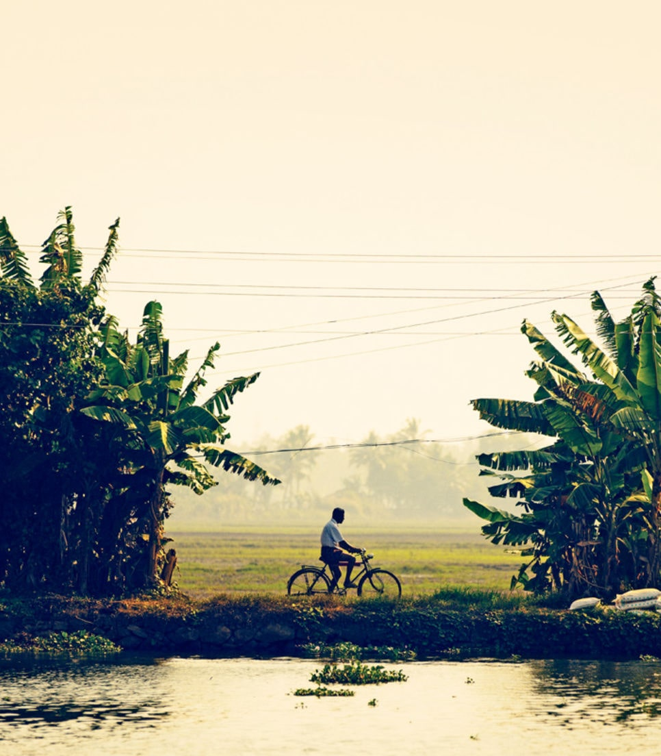 Cycle through rubber and spice plantations with stunning views