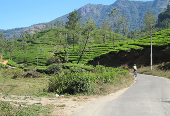 Cycling Kerala's Backroads