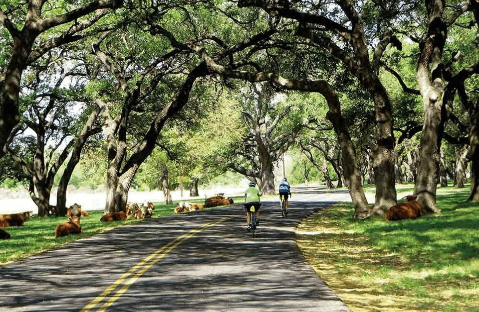 Texas Bicycle Tour: Explore the Hill Country