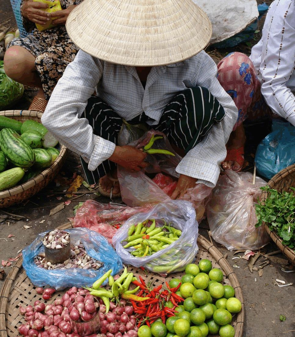 Taste the local cuisine, as fresh as it can get
