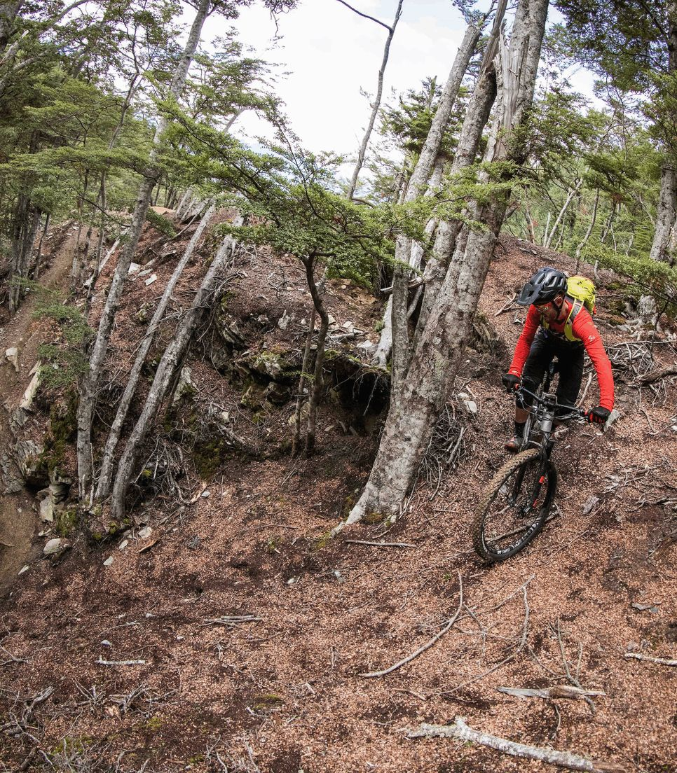 Bike a range of trails on the tour to test your skills