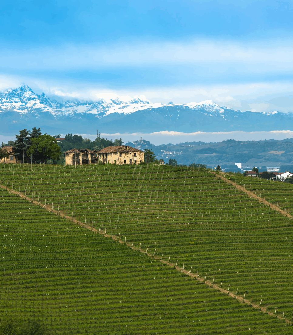 Discover the exquisite region of Piedmont