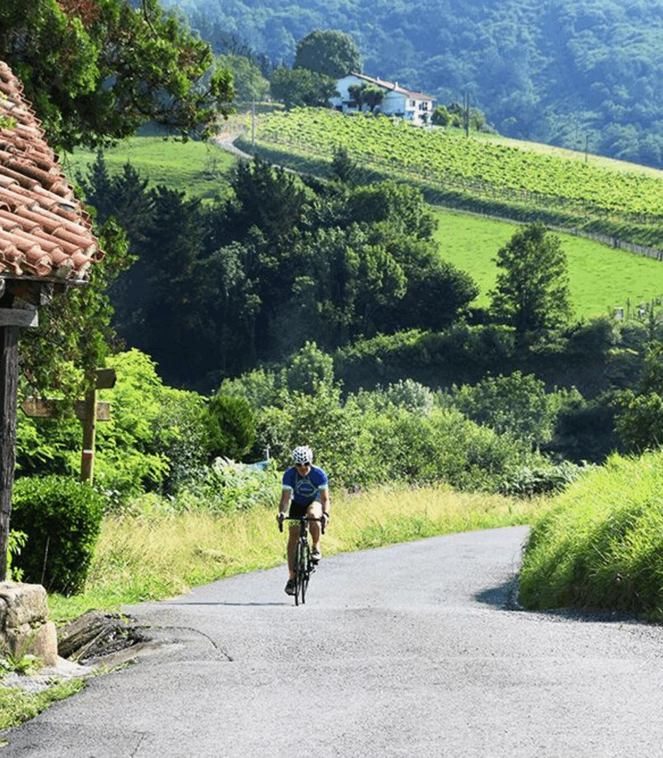 Pedal through rural and serene vistas on this 6 day tour