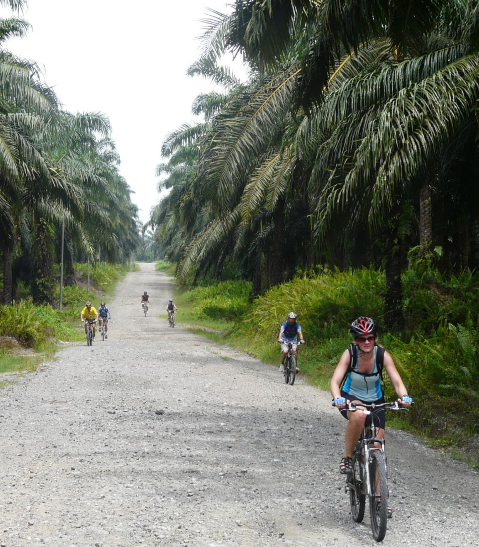 Cycle the road less travelled
