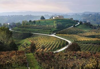 Cycle Tour Italy's Prosecco Hills
