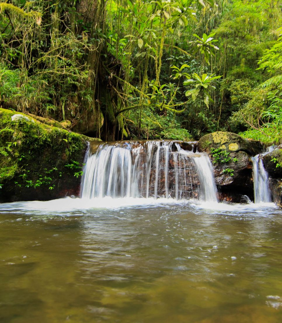 Discover the natural beauty of Madagascar