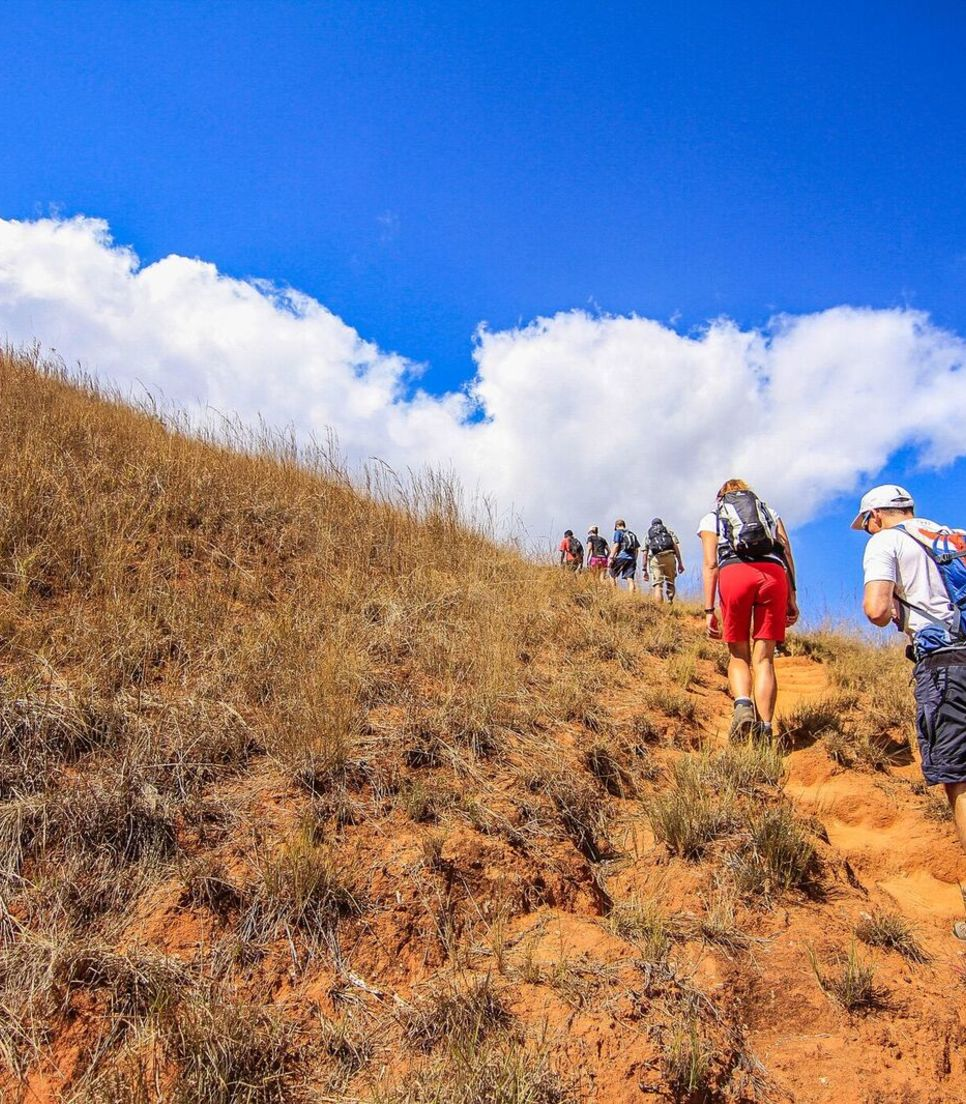 Enjoy some hiking to get up close and personal to the Madagascan flora and fauna