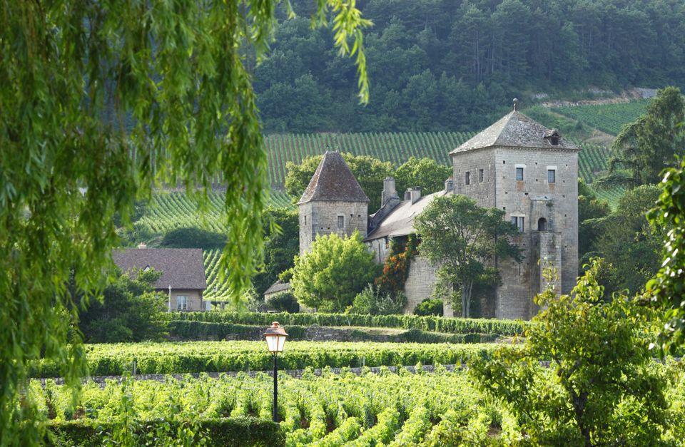 Quick Gourmet Biking Escape in Burgundy