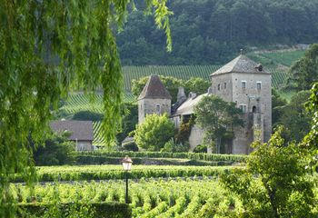 Quick Gourmet Biking Escape in Burgundy