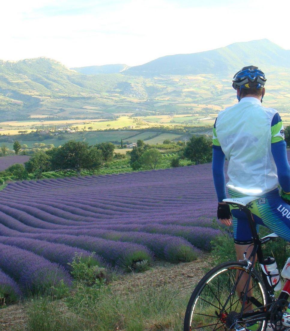 Enjoy the unique landscape of Provence