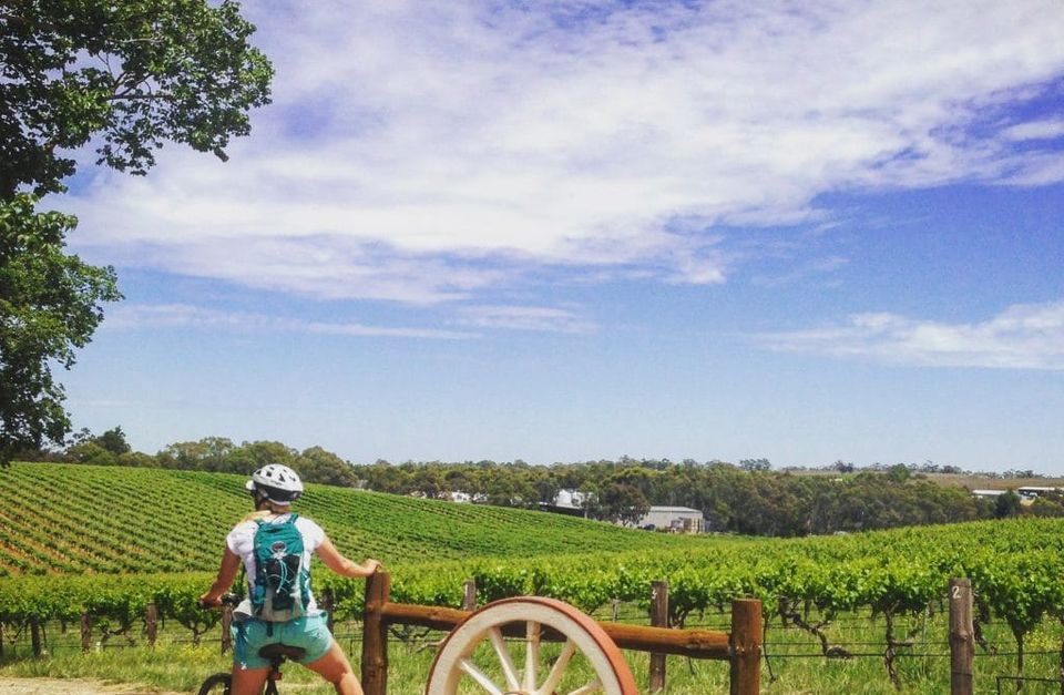 Cycling Tour Barossa & Clare Valley (Self Guided)