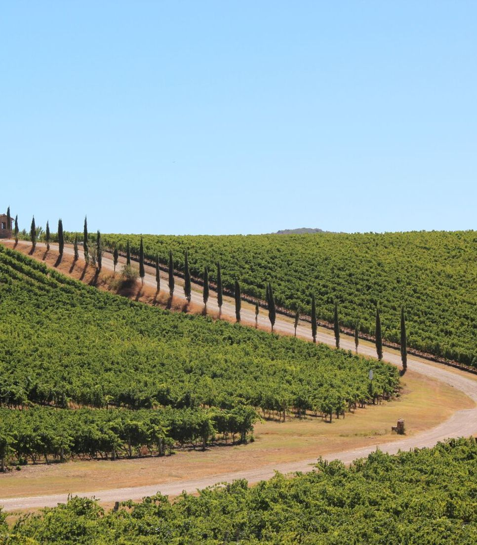 Enjoy a self-guided cycle tour of Tuscany, Italy