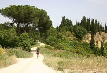 Bike Tours Tuscany: Self-guided ride through the Val D'orcia
