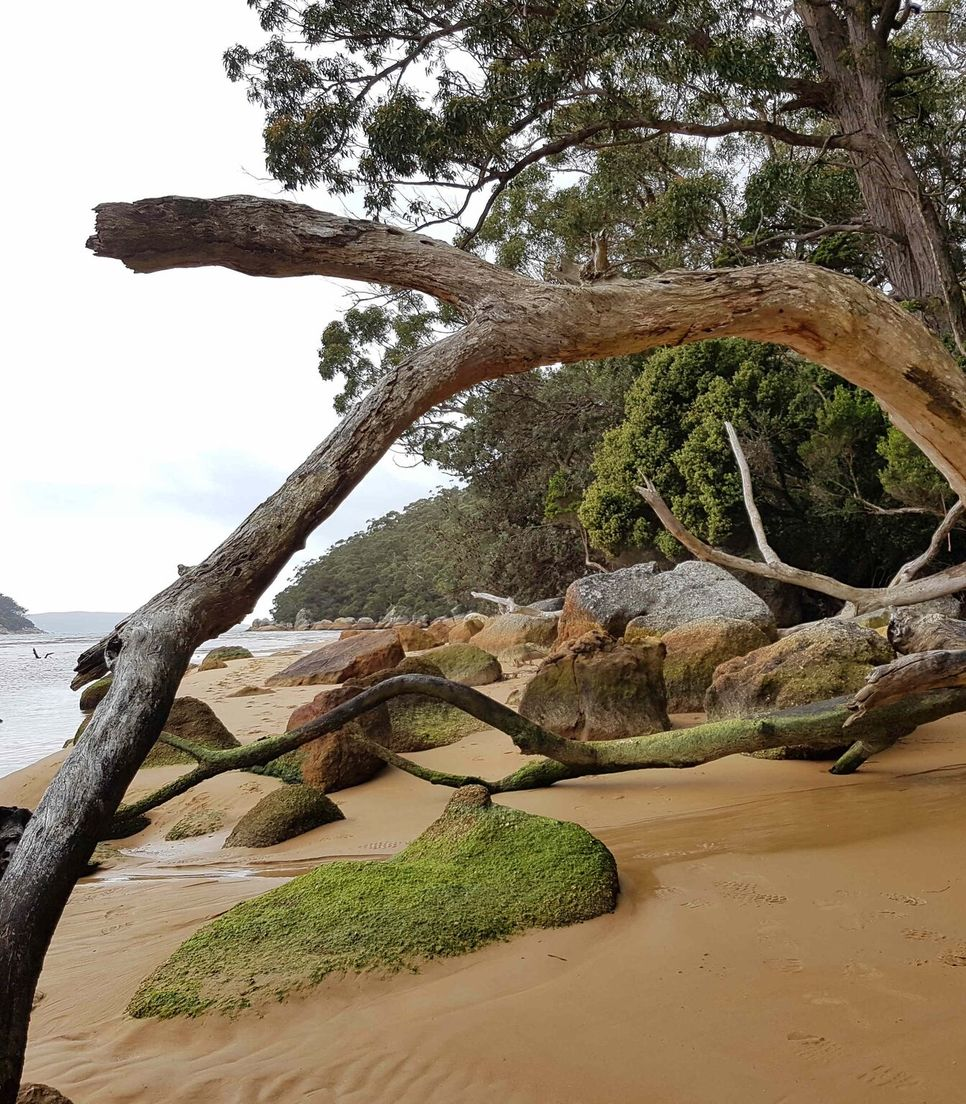 Enjoy exploring Wilsons Prom National Park on day 5