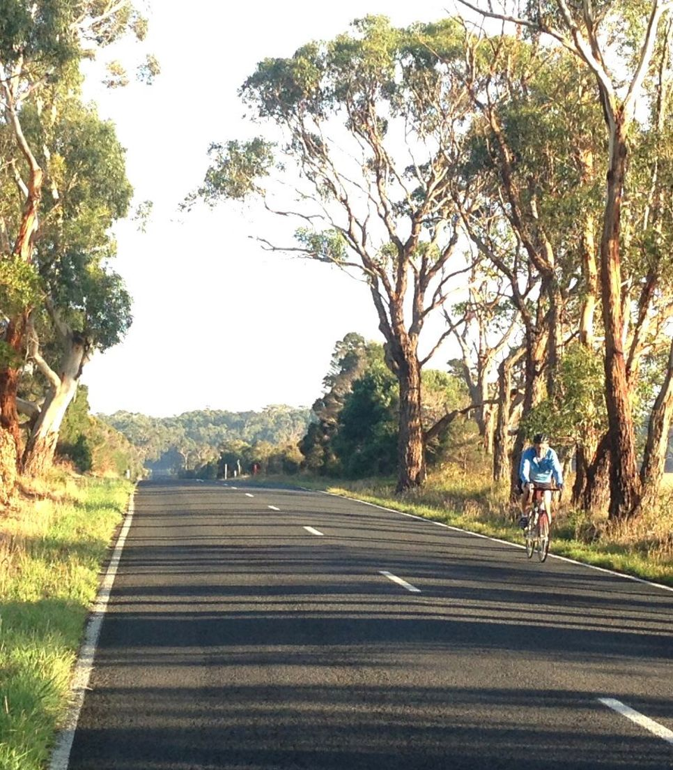 Pedal through the quiet lanes of the region