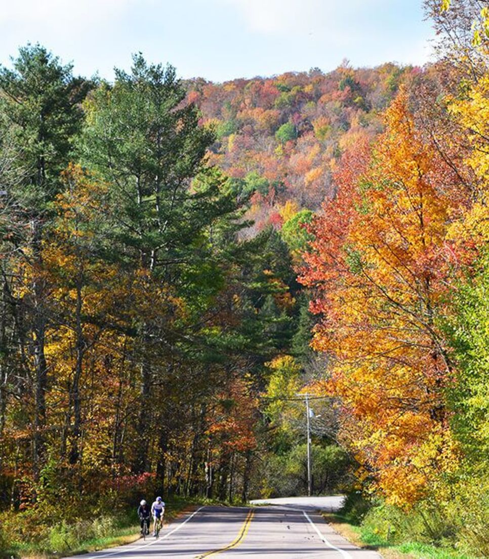 Immerse yourself in the spectacular display of color at this delightful time of year in Vermont