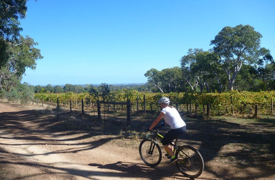 McLaren Vale Mountain Biking and Wine Day