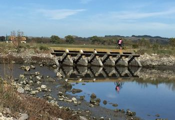 Ahuriri Estuary Trail and Urban Winery Experience