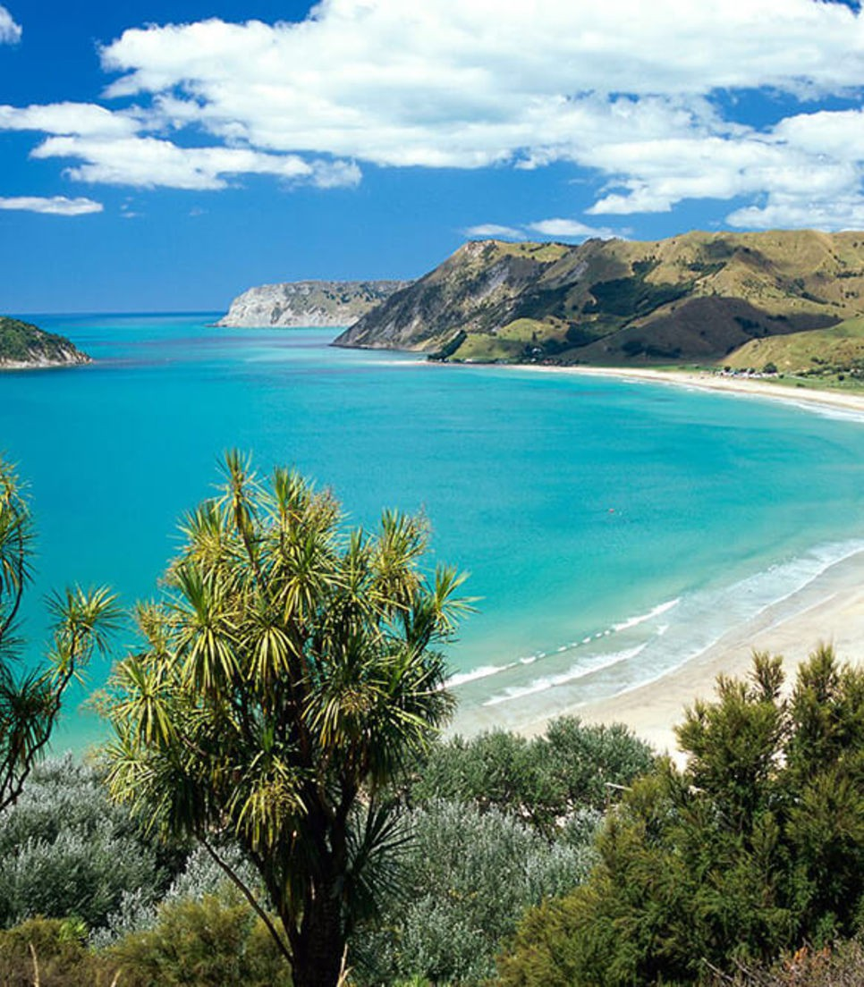 Discover New Zealand by bicycle