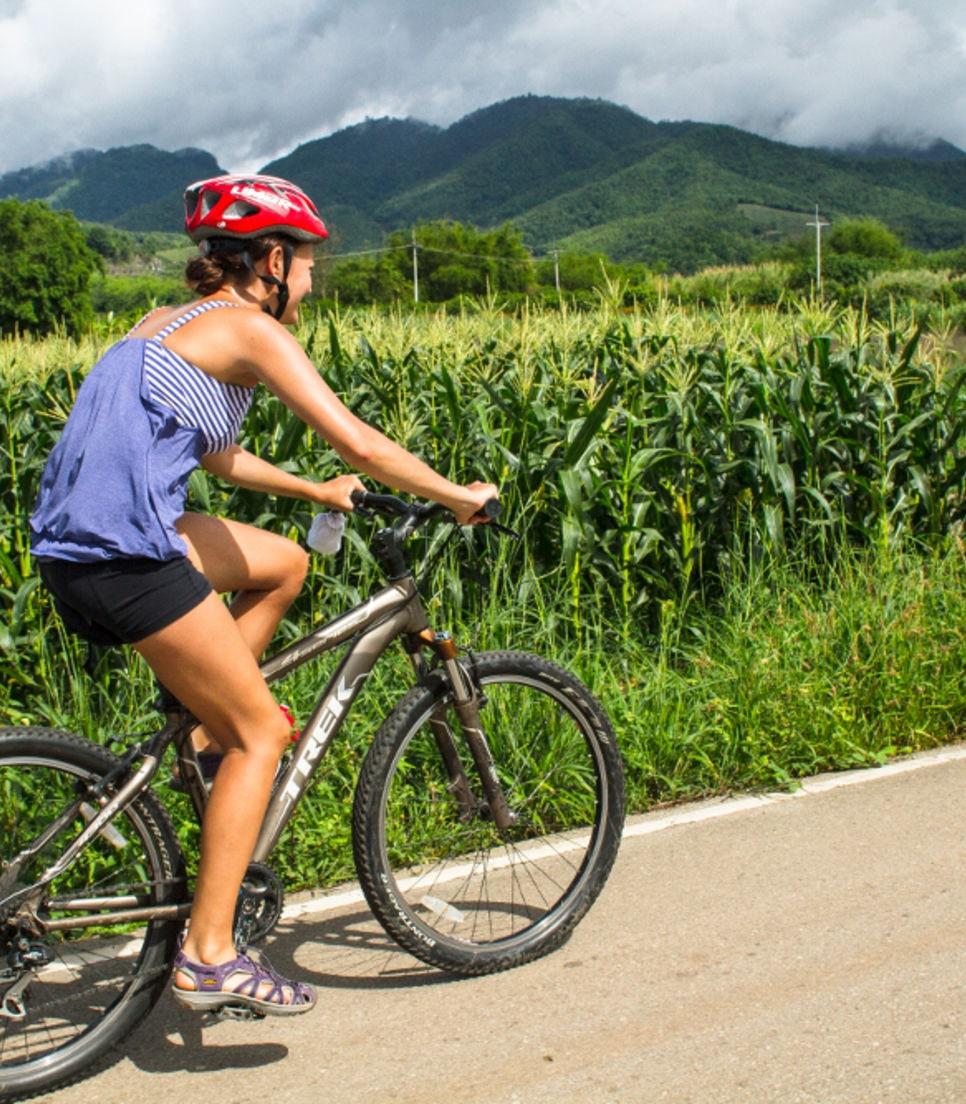 Bike past rice paddies