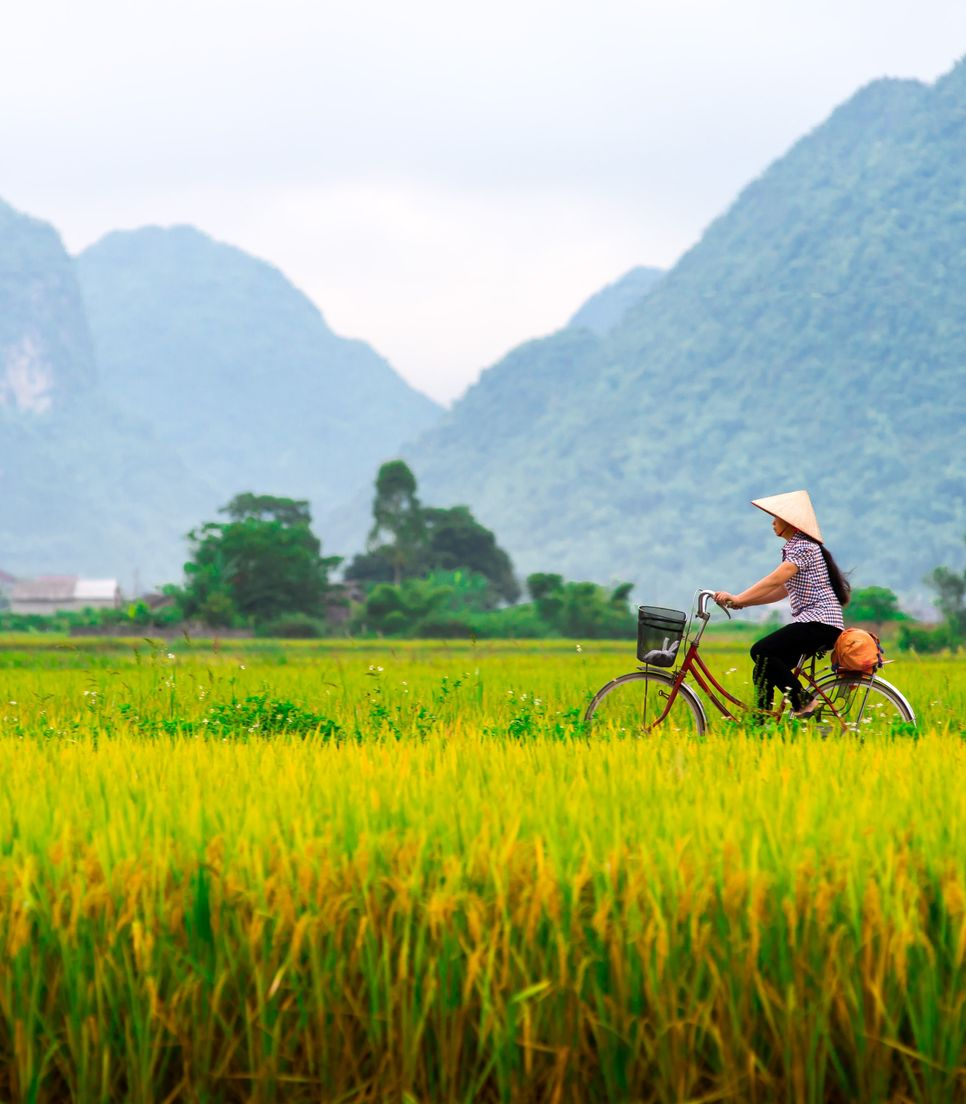 A captivating landscape of endless rice paddies and mountains
