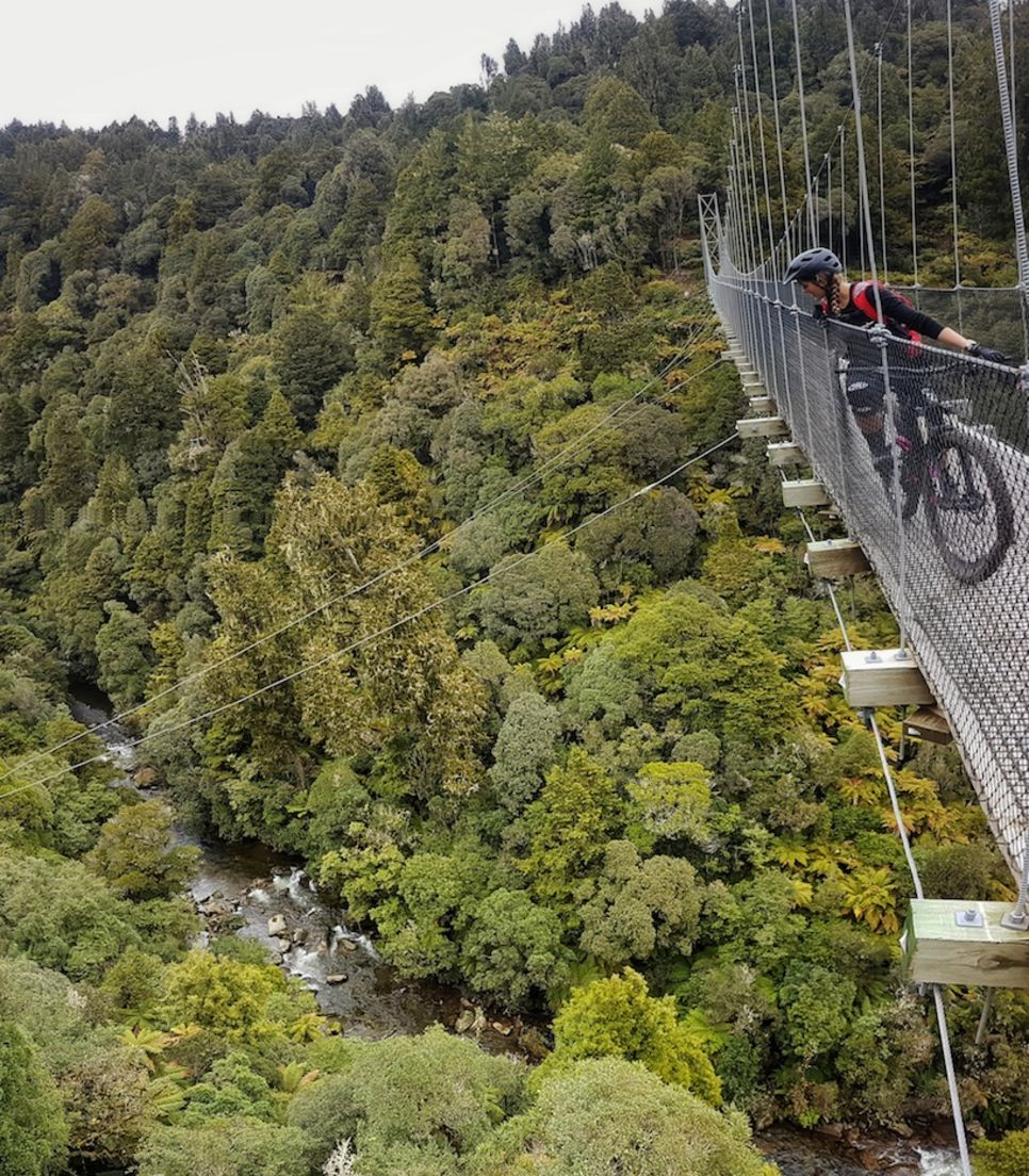 Discover the high suspension bridges along the route