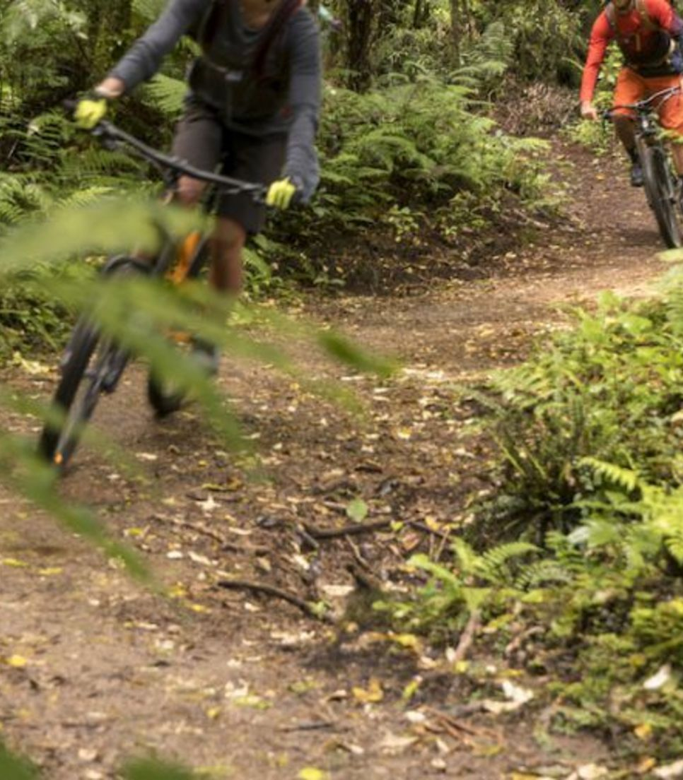 Ride on a range of singletracks during the tour