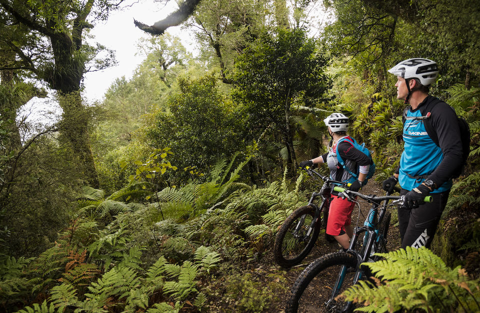 Crafted MTB Tour of New Zealand's North