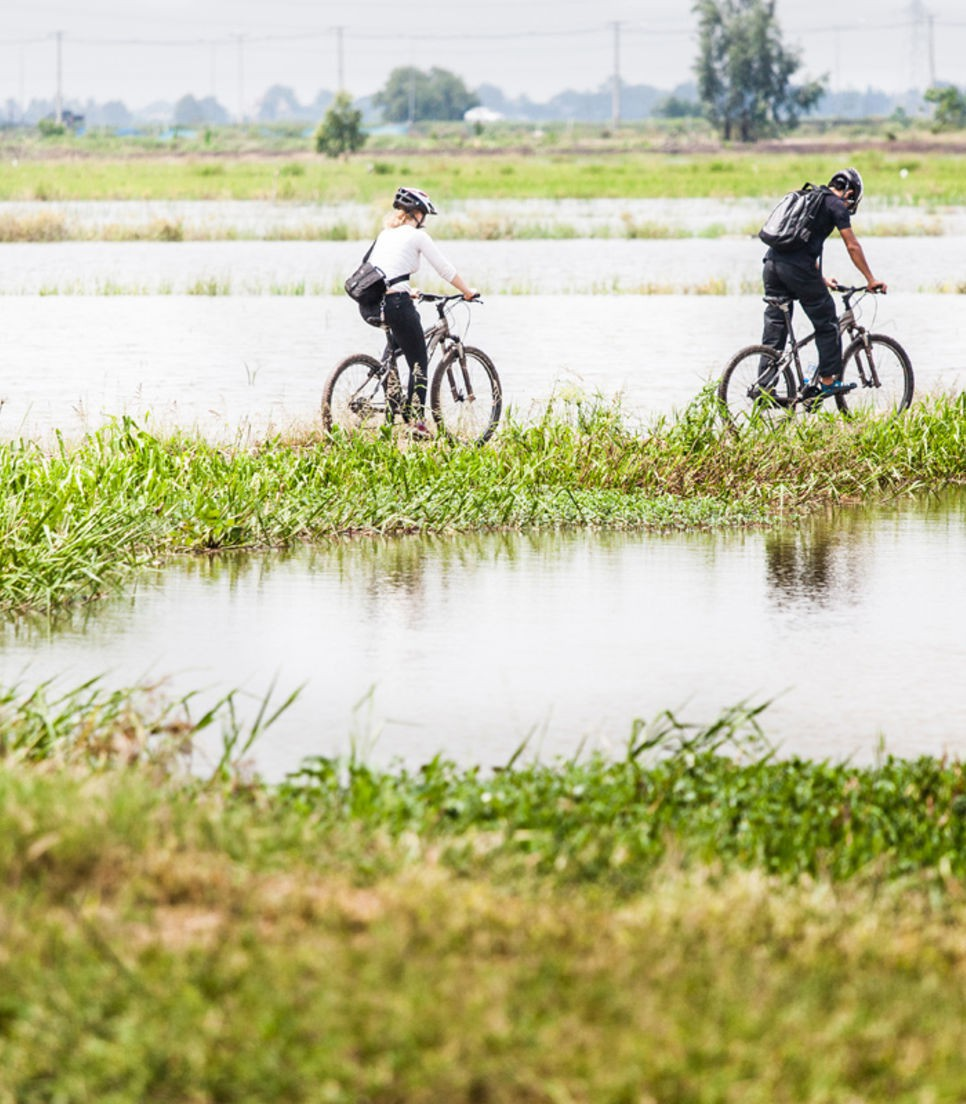 Test your cycling skills as you journey through various terrains