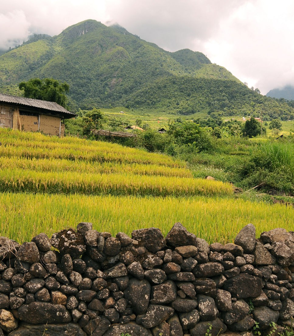 Get lost in the gorgeous views of rice fields, jungles and beaches