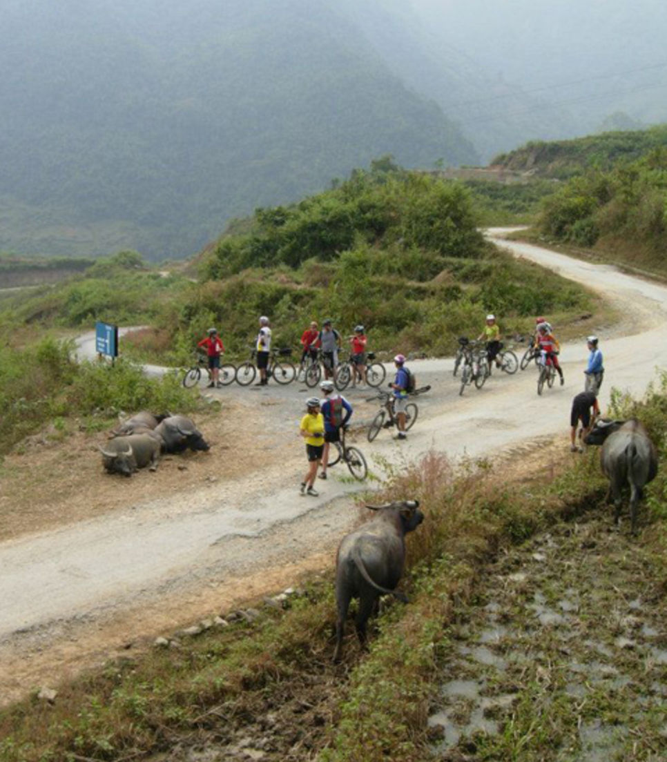 Traverse mountain passes which are amongst the highest in Vietnam