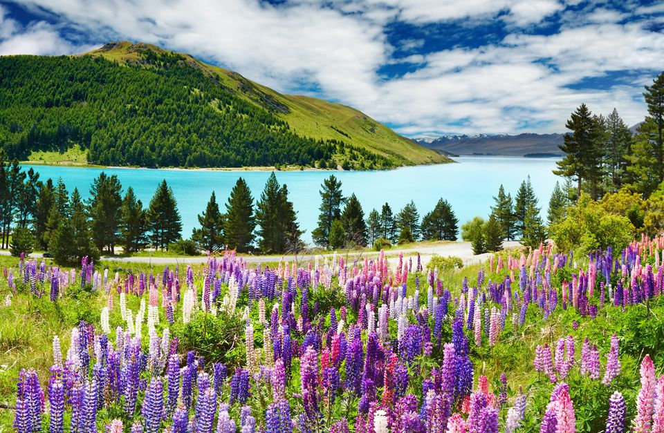 Luxury Alps 2 Ocean Experience
