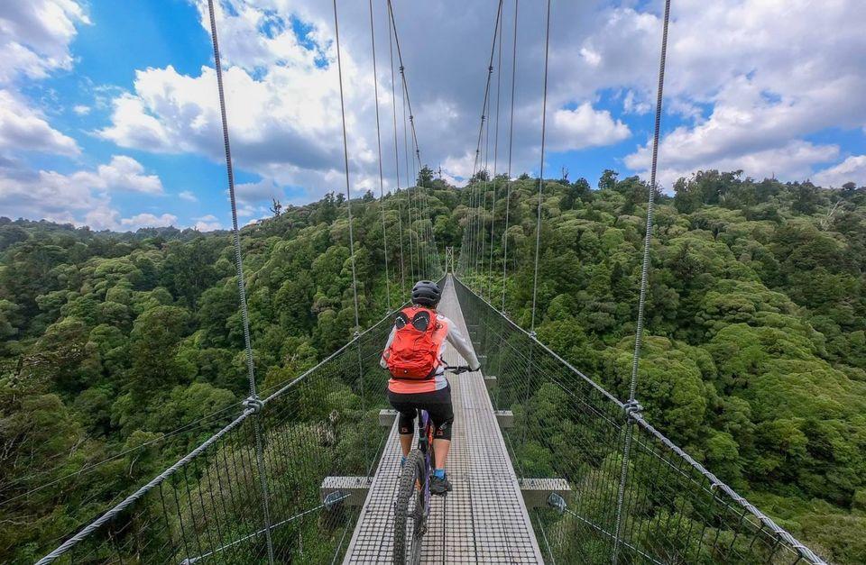 Riding Rotorua & Timber Trail