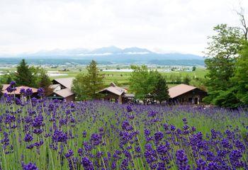 Highlights of Hokkaido