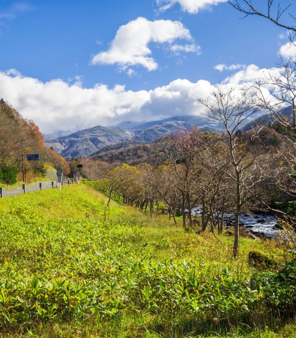 Relish a different side of Japan that's filled with nature