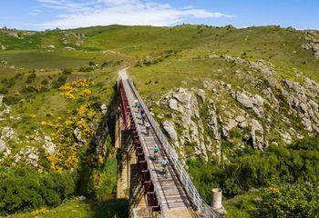 Otago Rail Trail Classic