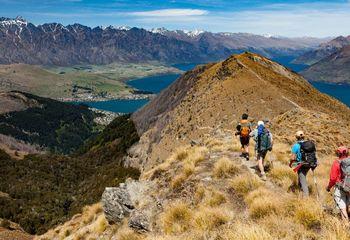 Fiordland, Hollyford and Stewart Island Trails
